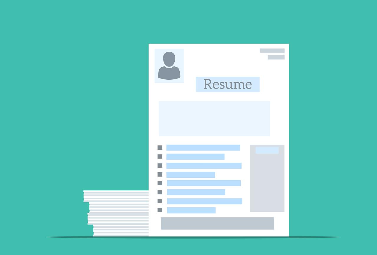 Professional CV writer Resume